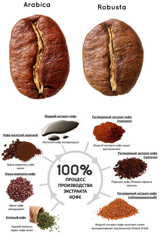 разница между кофе арабика и робуста